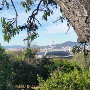 Visiter Barcelone en groupe en vélo