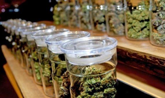 le cannabis à barcelone